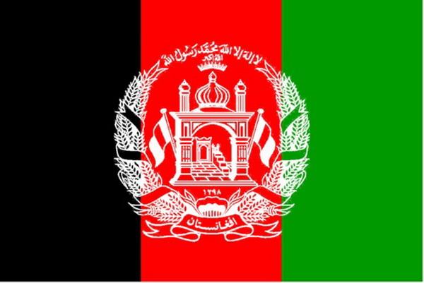 我司成功与阿富汗格罗斯水电站项目组完成二氧化碳灭火系统合作